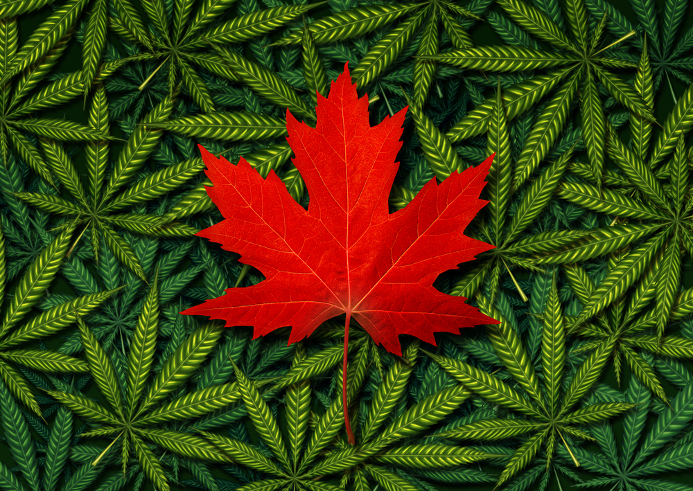 how to sell weed online canada